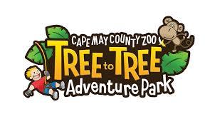 Tree to Tree Adventure Logo 2019.png